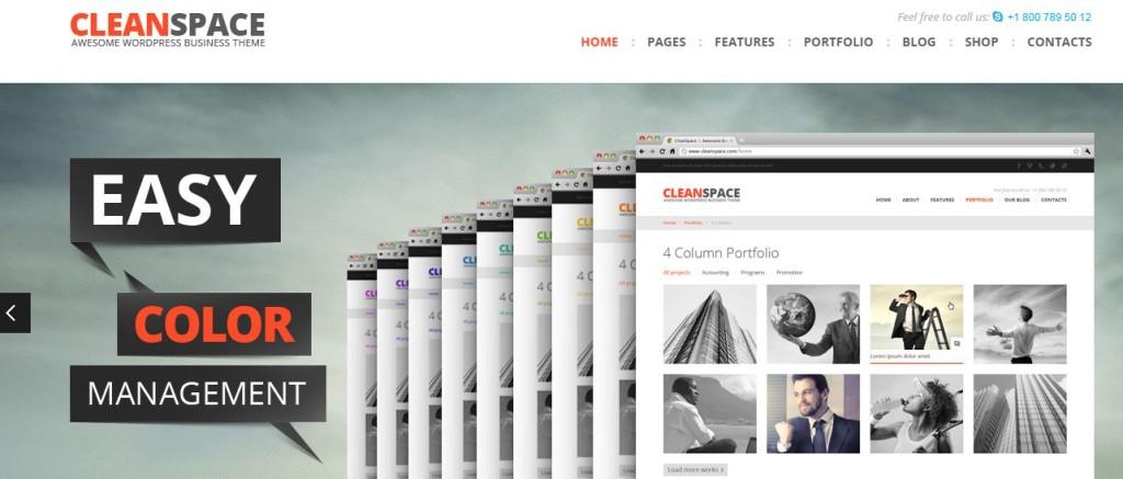 cleanspace-wordpress-theme