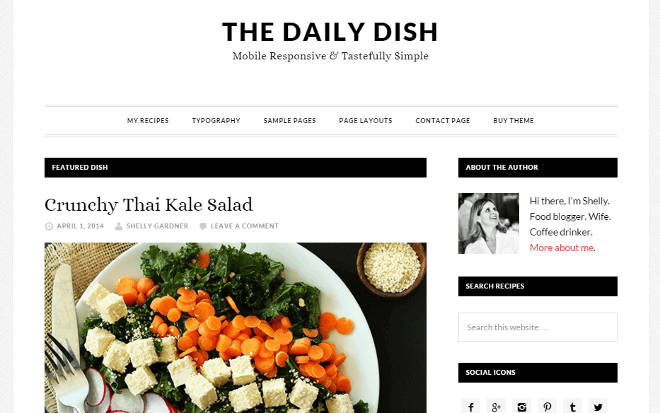 Daily-Dish-Pro-cooking-wordpress-theme