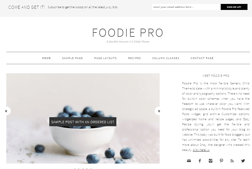 Foodie-Pro-wordpress-recipe-theme