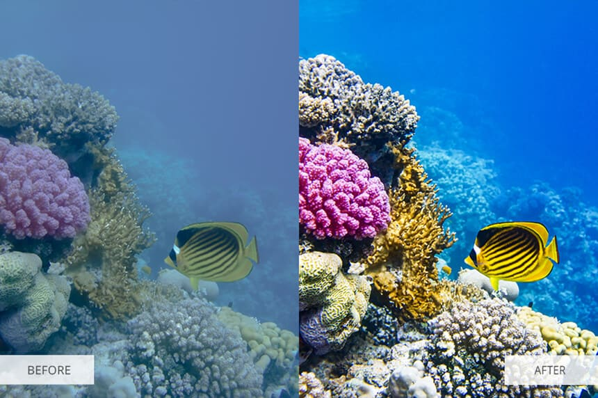 underwater photography lightroom presets